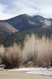 Il grandi parco nazionale e prerogativa delle dune di sabbia Fotografie Stock