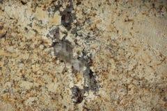 Il granito naturale di colore beige con le macchiette e le strisce scure, è chiamato Tenero immagini stock libere da diritti