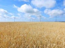 Il grano pianta il campo e le turbine di energia eolica Fotografia Stock Libera da Diritti