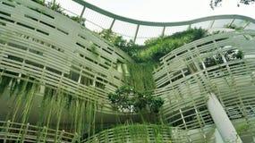 Il grattacielo è riempito in pieno di spazio verde fotografia stock libera da diritti