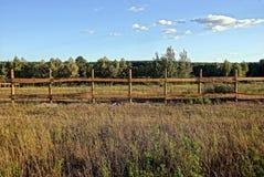 Il gray di legno recinta un'erba asciutta su un prato Fotografia Stock Libera da Diritti