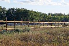 Il gray di legno recinta un'erba asciutta su un prato contro un fondo degli alberi e del cielo Fotografia Stock