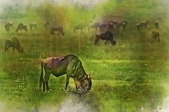 Il gregge degli gnu è pittura dell'acquerello della savanna illustrazione vettoriale