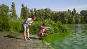 Il gruppo degli ecologi preleva i campioni delle alghe verdi sulla banca del fiume inquinante stock footage