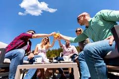 Il gruppo di amici che tostano i loro vetri del succo si avvicina allo stagno fotografie stock