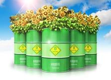 Il gruppo di combustibile biologico verde tamburella con i girasoli contro i wi del cielo blu Immagine Stock