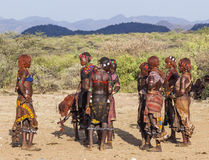 Il gruppo di donne di Hamar balla durante la cerimonia di salto del toro Turmi, valle di Omo, Etiopia Fotografie Stock Libere da Diritti