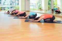 Il gruppo di persone che fanno il ` s del bambino di yoga posa nella stanza di addestramento dello studio Fotografia Stock