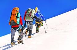 Il gruppo di scalatori raggiunge la cima del picco di montagna Scalata e Fotografie Stock