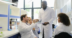 Il gruppo di scienziati che lavorano nel laboratorio della genetica discute insieme l'esempio della pianta stock footage