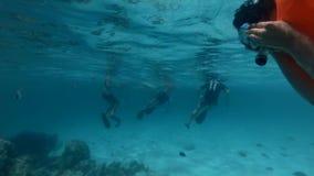 Il gruppo di turisti nuota in acqua circondata dal pesce archivi video