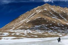 Il gruppo di viaggiatore con zaino e sacco a pelo sta camminando sul fiume congelato sul modo alla montagna sacra di Kailash, Tib Immagine Stock