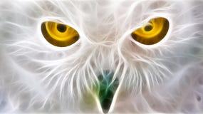 Il gufo eyes il frattalo Fotografie Stock