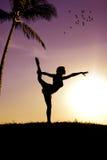 Il gymnast   Immagini Stock Libere da Diritti