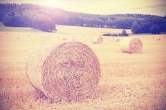Il instagram d'annata tonificato ha raccolto il campo con le balle di fieno Immagine Stock