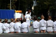 Il judo Fotografie Stock Libere da Diritti