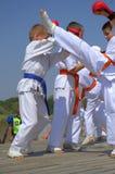 Il karatè combatte la dimostrazione Fotografia Stock