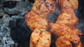Il kebab è fritto sui carboni stock footage