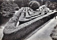 Il labirinto a Hampton Court Palace, Middlesex Cartolina in bianco e nero d'annata fotografie stock