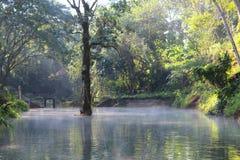 Il lago Fotografie Stock