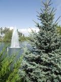 Il lago con una fontana fotografia stock