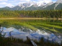 Il lago dog riflette le montagne nel parco nazionale di Kootenay Immagini Stock
