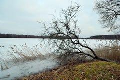 Il lago Galve, Trakai Lituania Fotografia Stock