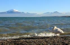 Punto di vista di Lago di Garda fotografie stock libere da diritti