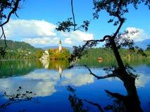 Il lago ha sanguinato Fotografia Stock Libera da Diritti