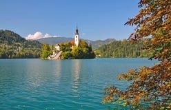 Il lago ha sanguinato, alpi di Julian, Slovenia Fotografie Stock Libere da Diritti