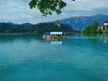Il lago ha sanguinato la barca della Slovenia sull'acqua Fotografie Stock