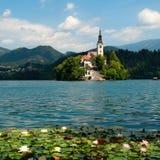 Il lago ha sanguinato in Slovenia Fotografia Stock