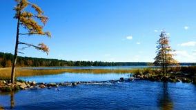 Il lago Itasca ha tenuto dietro un uomo reso a diga alle sorgenti del fiume Mississippi al parco di stato di Itasca del lago nel  archivi video