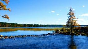 Il lago Itasca ha tenuto dietro un uomo reso a diga alle sorgenti del fiume Mississippi al parco di stato di Itasca del lago nel  video d archivio
