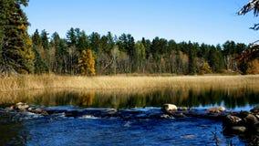 Il lago Itasca ha tenuto dietro un uomo reso a diga alle sorgenti del fiume Mississippi al parco di stato di Itasca del lago nel  stock footage
