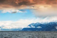 Il lago Lemano in alpi svizzere, Svizzera Fotografia Stock Libera da Diritti