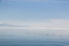 Il lago Lemano calmo e bello Fotografie Stock