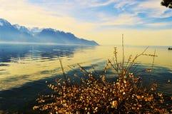 Il lago Lemano nella sera, in Svizzera, Europa Fotografia Stock Libera da Diritti