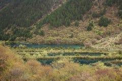 Il lago in montagna Fotografia Stock Libera da Diritti