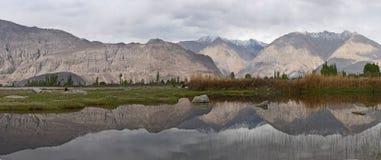 Il lago mountain fra i pendii rosa e marroni di pietra enormi, lungo la riva del lago è pascoli verdi con alta erba, Himalaya Immagini Stock