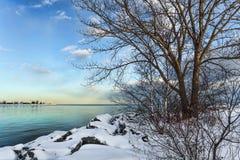 Il lago Ontario invernale Immagini Stock Libere da Diritti