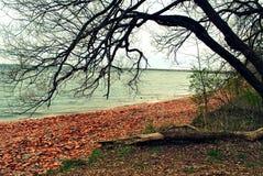 Il lago Ontario in Mississauga Canada Immagini Stock Libere da Diritti