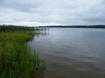 Il lago pike Fotografia Stock