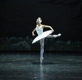 Il lago solo swan di Lakeside-balletto del cigno di Aojita-The immagini stock