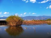 Il lago sul cielo blu immagine stock libera da diritti