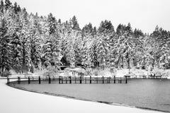 Il lago Tahoe dopo una tempesta della neve immagini stock libere da diritti