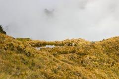 Il lago in un'erba gialla ha archivato nelle montagne Immagine Stock