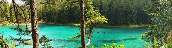 Il lago verde in Tragoess, Austria (panorama) Fotografie Stock Libere da Diritti