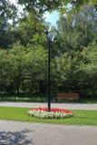 Il lampione al passaggio pedonale del parco Immagini Stock Libere da Diritti