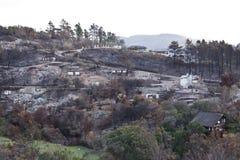 Il lato di una collina ha bruciato alla terra da un fuoco infuriantesi enorme Fotografia Stock